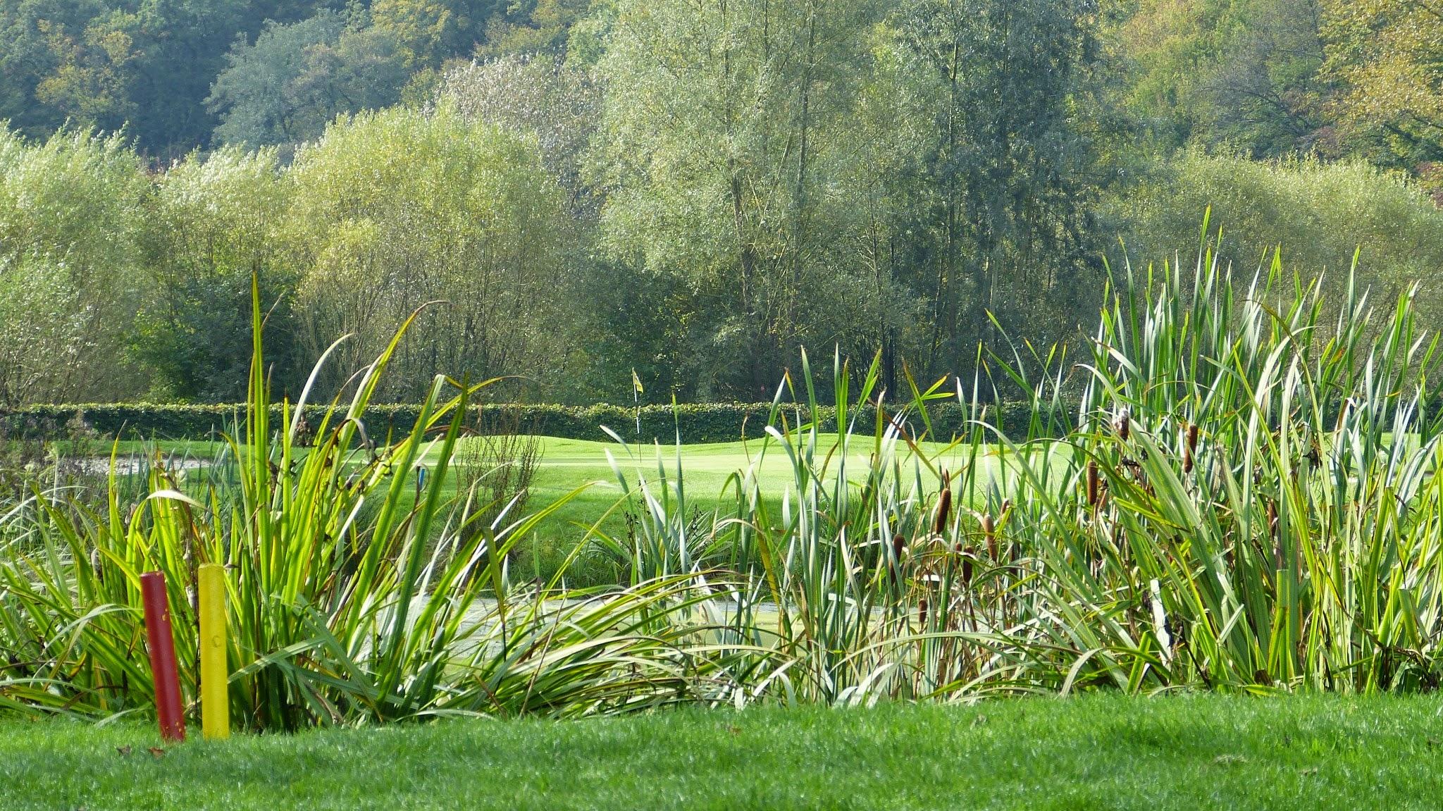 Golfplatz - Bahn13 kurz vor dem Wasserhindernis