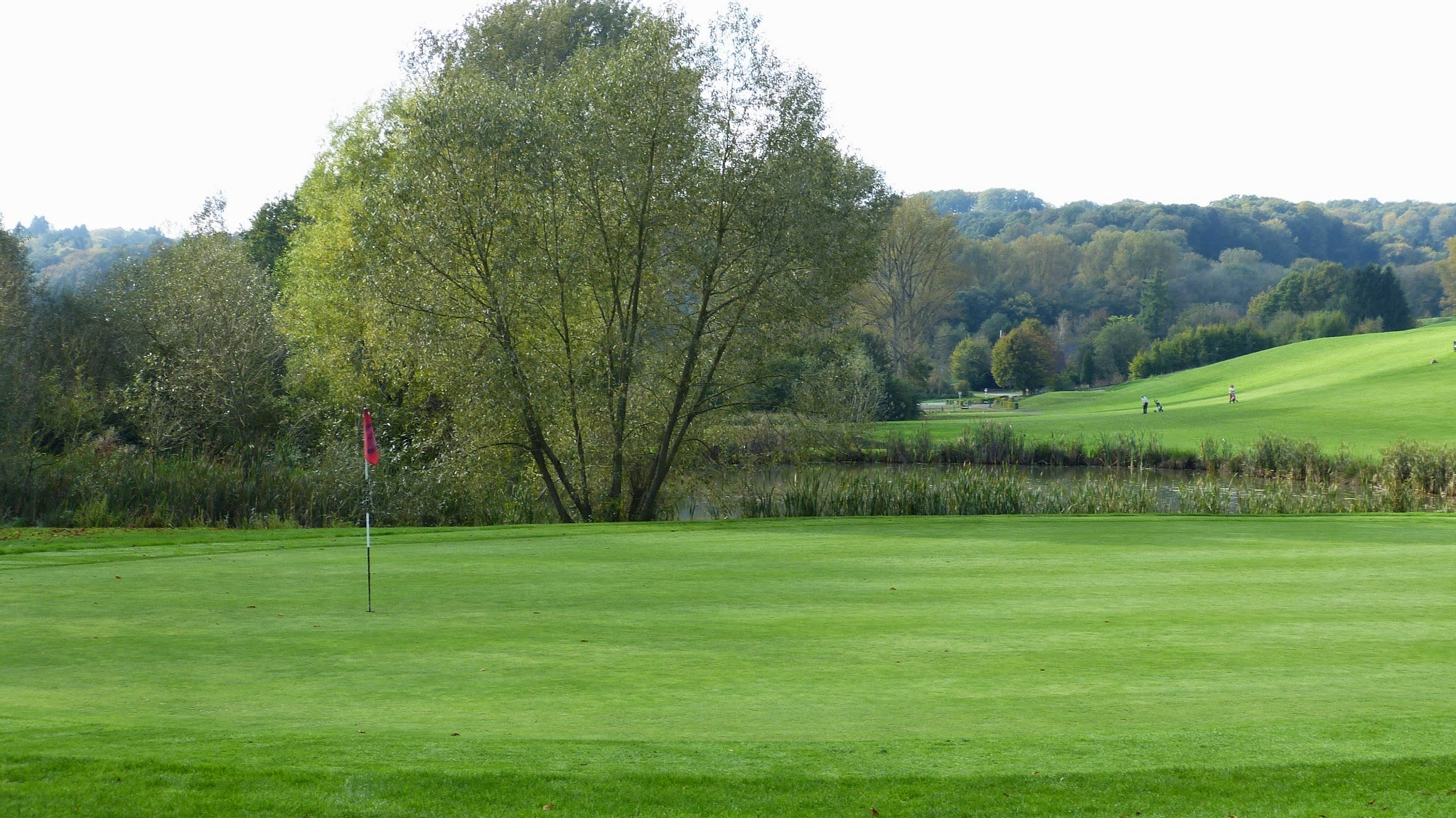 Golfplatz - Grün18